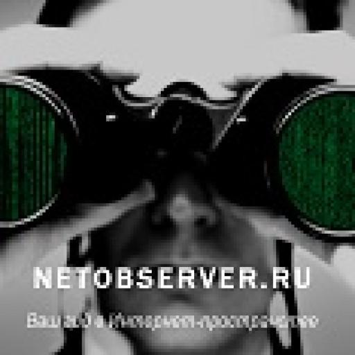 netobserver.ru icon