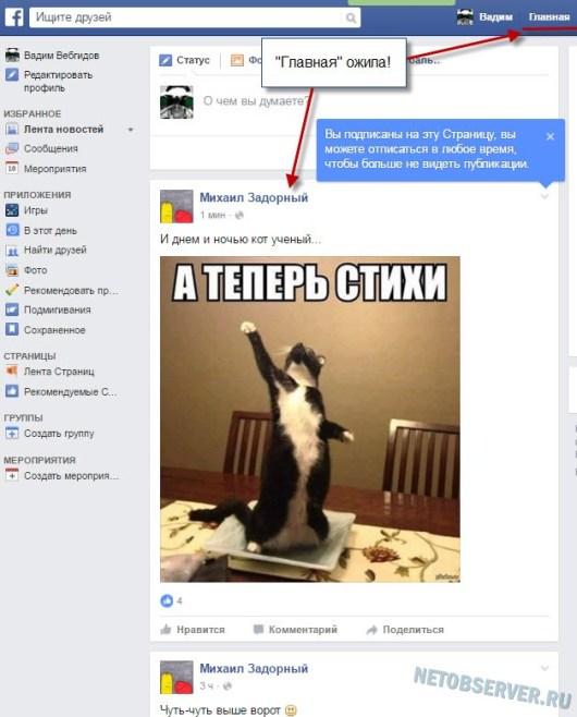 Наполненная контентом главная личная страница профиля Facebook