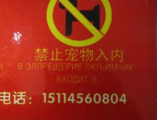Смешные китайские вывески - важно помнить кто ты и где