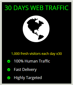 30 days visitors traffic package