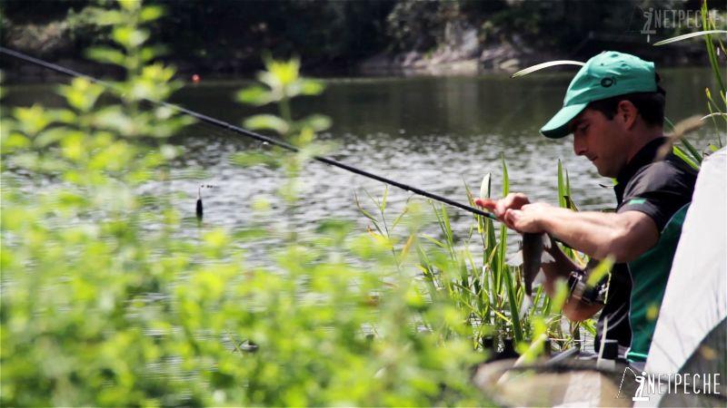 pêche à l'anglaise au flotteur coulissant breme