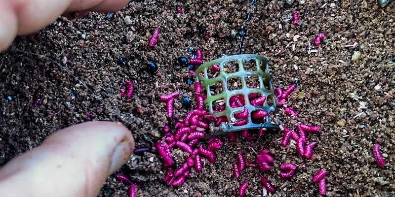 ajouter des esches au cage feeder plastique lors de pêche en étang