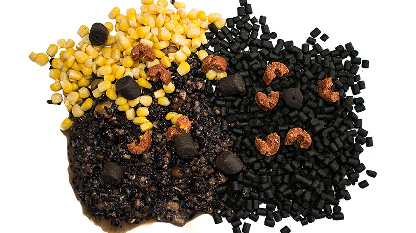 amorçage pour la pêche de la carpe au coup étape 1 des appâts variés  graine chenevis mais pellet frolic