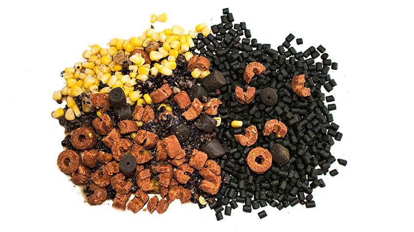 amorçage pour la pêche de la carpe au coup étape 2 des appâts variés  graine chenevis mais pellet frolic