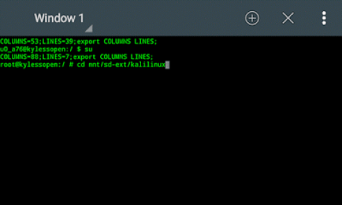 cd mnt/sd-ext/kalilinux