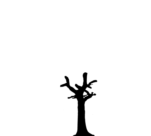 silhouette of a tree which has gone through the process of topping