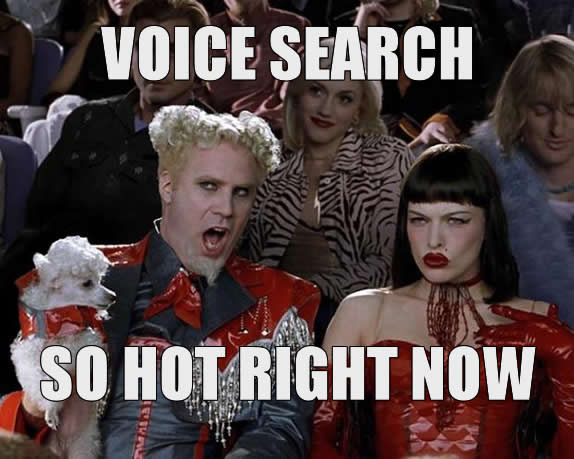 Voice Search - So Hot Right Now
