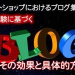 ネットショップのブログ集客≪120%の効果を実感できる集客法≫