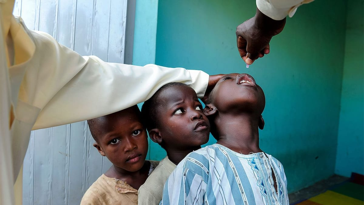 b77fce6cc78fbce7 - World Polio Day: Adamawa   recording less resistance to immunisation – Official