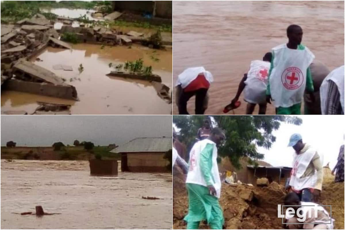 The flood disaster that occurred in Zamfara on Wednesday, destroyed 110 houses in Zurmi Local Government Area of the state, an official said on Friday. The Special Adviser to Gov. Bello Matawalle on Humanitarian Affairs, Disaster Management and Social Development, Hajiya Fa'ika Ahmad,  disclosed this to the News Agency of Nigeria in Gusau. NAN reports […]