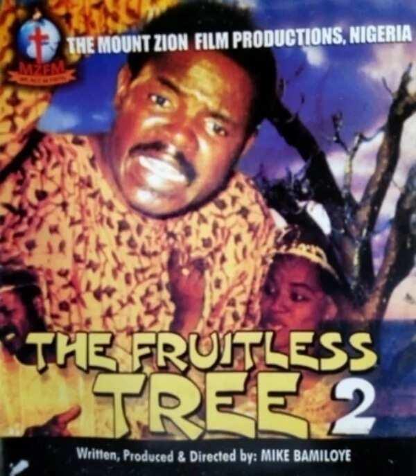 Top Mount Zion movies for true believers