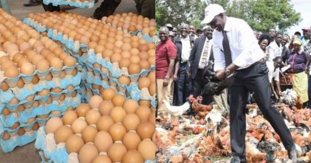 4 arrested for stealing 10 trays of eggs from William Ruto's home ...