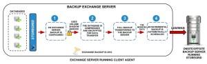 Microsoft Backup Exchange Server | NetSupport USA