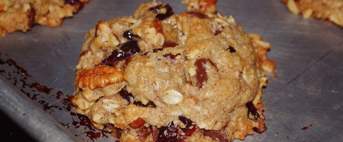 Nettie's Christmas Chocolate Chip Cranberry Pecan Oatmeal Cookies
