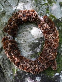 Circular wreath made of pine cones on a tree