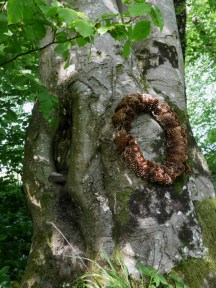 The wreath seems placed to mirror the ancient knot on the other side of the tree