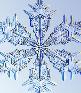 Snøfnugg fra Yr en serie med av snøfnugg tatt med mikroskopfotografering