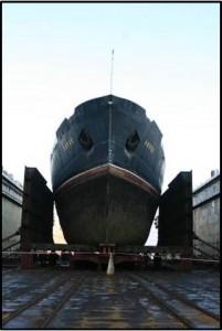 Lepse-dock-201x300