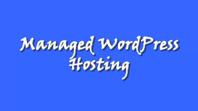 Managed WordPress Website