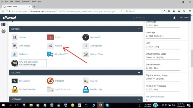 AwStats in cPanel