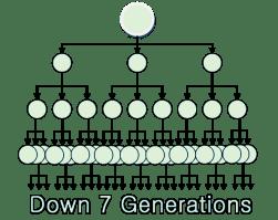 BitBillions Matrix