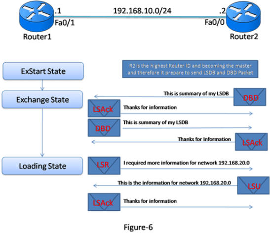 Introduction and Exclusive Explanation of OSPF Operation 16