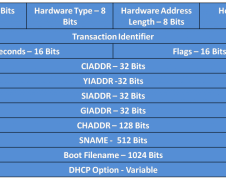 DHCPv4 Message Format