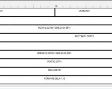 BPDU frame fields packet tracer