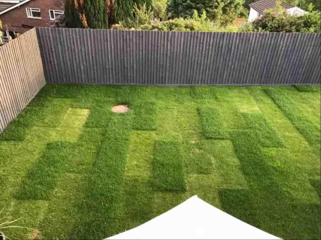Several Advantages of Artificial Grass 2