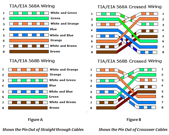 Straight-through & Crossover Cable