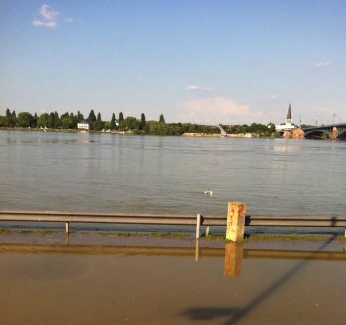 Hochwasser in Mainz am Rhein
