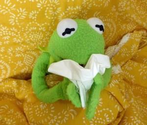 Kermit der Frosch liegt im Bett und schnäuzt sich die Nase