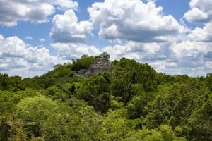 Berg mit Maya-Ruine zwischen Bäumen