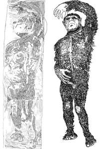 Skizze der Originalabbildungen des Icemans. eine haarige, menschenähnliche Figur liegt auf dem Rücken, den linken Arm im Bogen über den Kopf gehalten