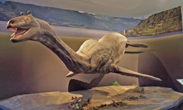 Ein langhalsiges Wesen mit zwei flachen Flippern und Walschwanz, und zwei kurzen Hörnchen