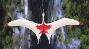 Weiß-roter Flugsaurier im Flug von oben