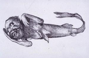 Barnums Feejee Mermaid