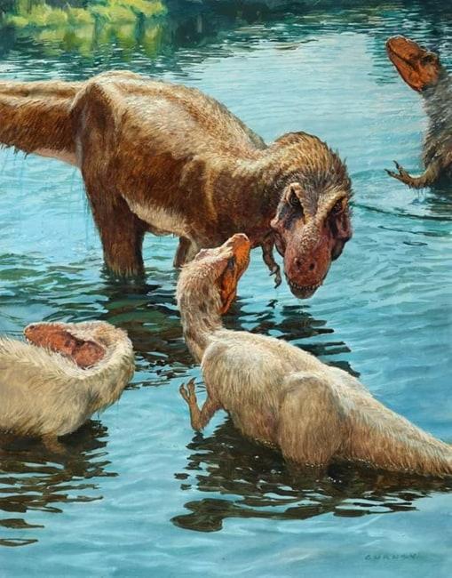 Tyrannosaurier im Wasser
