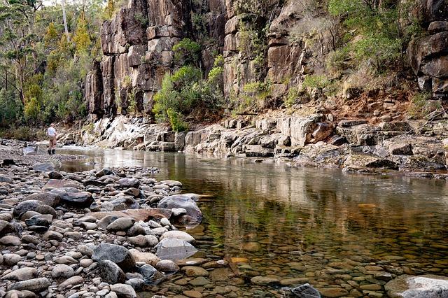 Tasmanische Landschaft, was würden Füchse anrichten?