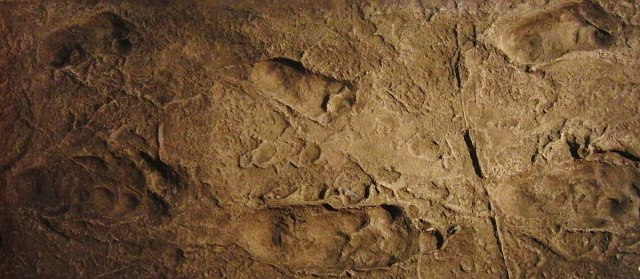 Laetoli-Spuren