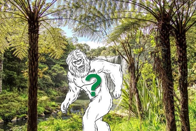 Das Moehau-Monster?