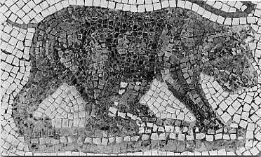 Mosaik eines Atlasbärs