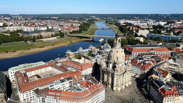 Bis nach Dresden sind Seehunde gekommen