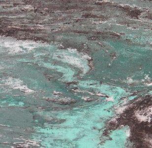 Flexibler Marmor Green Oasis