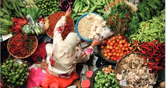 More Fruits and Veggies, Less Red Meat: This is Planet-friendly Diet