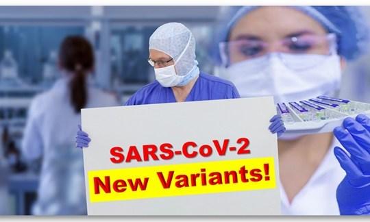 The arrival of the New Coronavirus Strains!