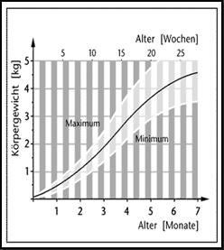 Natürliches Wachstum am Beispiel des Körpergewichts von Waschbären.