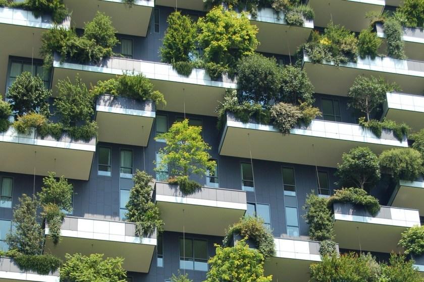 Hitze in den Städten – Begrünte Dächer und Fassaden gegen den Klimawandel