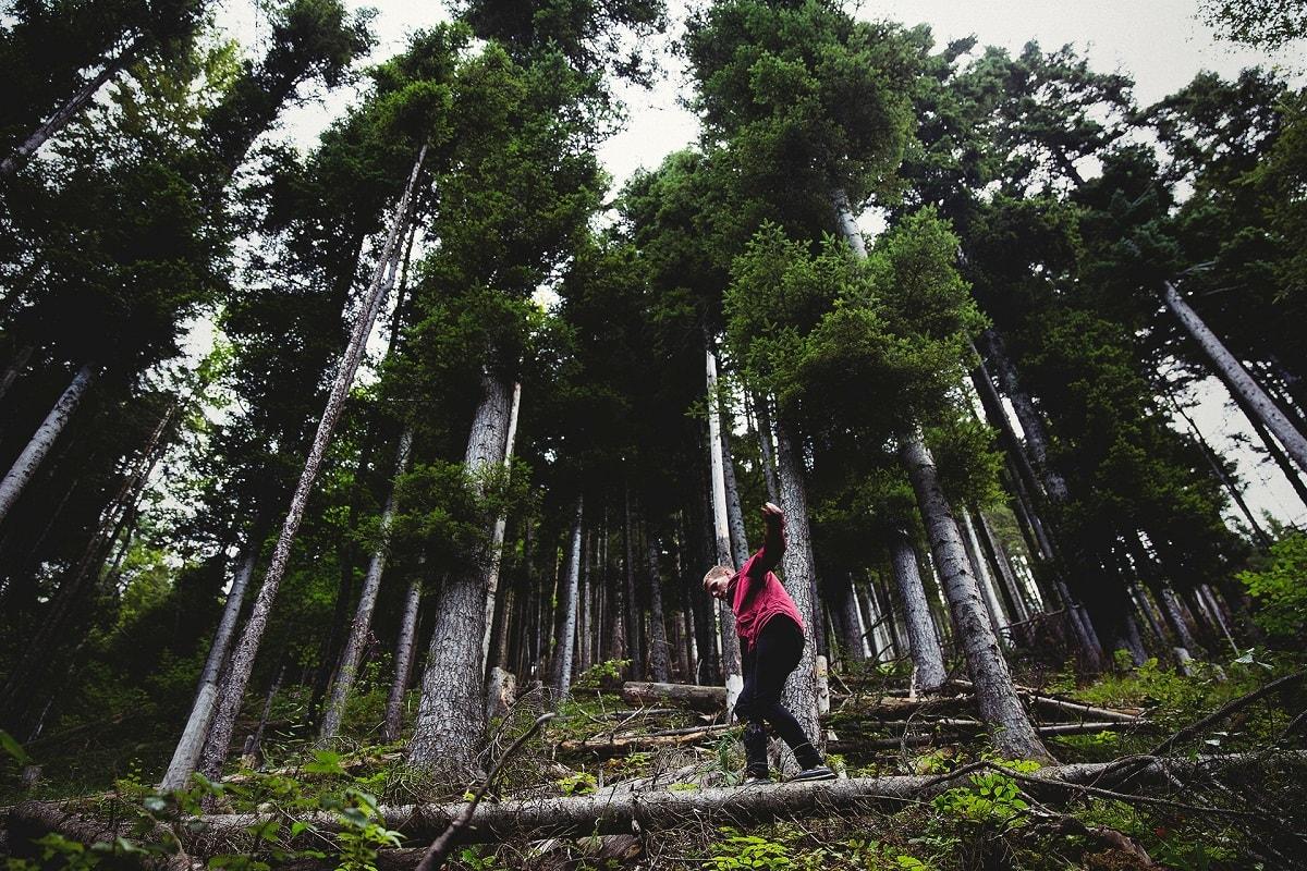 Mann im Wald balanciert auf einem Stamm. (Foto: Joshua Earle, Unsplash.com)