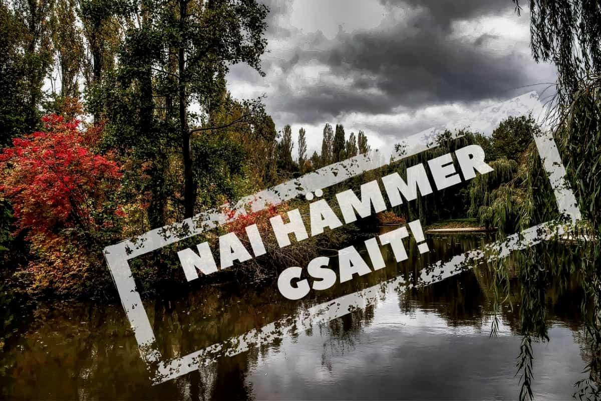 Biotop und Nai Hämmer Gsait. (Symbolfoto: Neue Debatte mit Material von Burghard Mohren, Pixabay.com, Creative Commons CC0)
